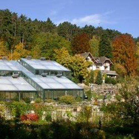 Botanical Garden: Le Jardin botanique