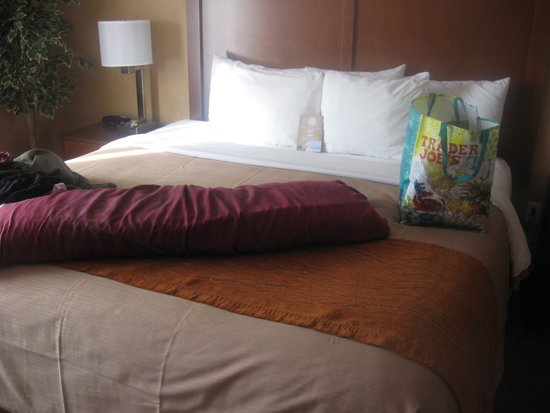 Comfort Inn & Suites: Luxury bed and bedding in King Suite room (minus body pillow and Trader Joe's bag!)