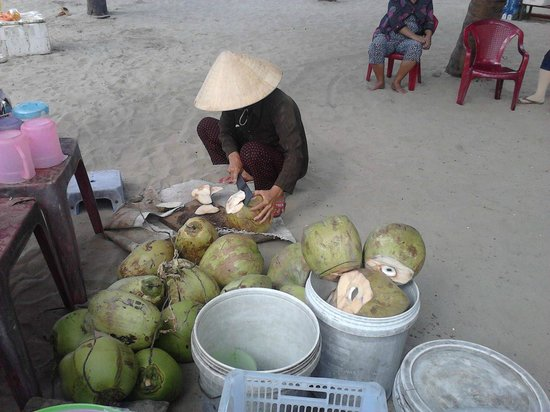 Hoi An Historic Hotel: Coconuts for sale at Cua Dai Beach via the Hotel's Shuttle Bus