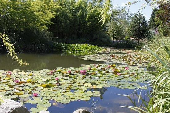Jardin Aquatique Aux Fleurs de l'Eau