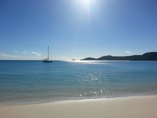 Seabreeze Tourist Park Airlie Beach : Beautiful Whitehaven Beach.