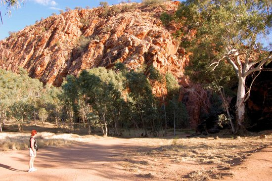 MacDonnell Ranges: Jessie Gap East Macs