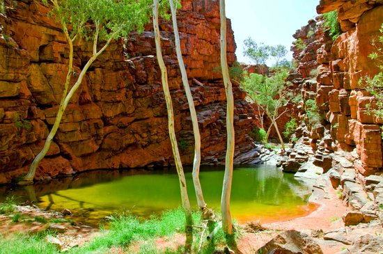 West MacDonnell National Park, Αυστραλία: John Hayes Rockhole East Macs