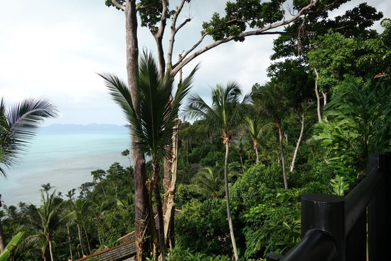 Four Seasons Resort Koh Samui Thailand : Mesmerized by the view