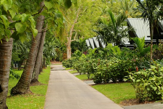 Palm Bungalows: Bungalows 24 and up