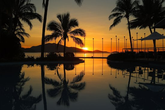 Palm Bungalows: Sunrise at Sails and Dolphin pool