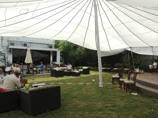 The Lime Tree at Kuch Khaas: Canopy over the garden at Kuch Khaas