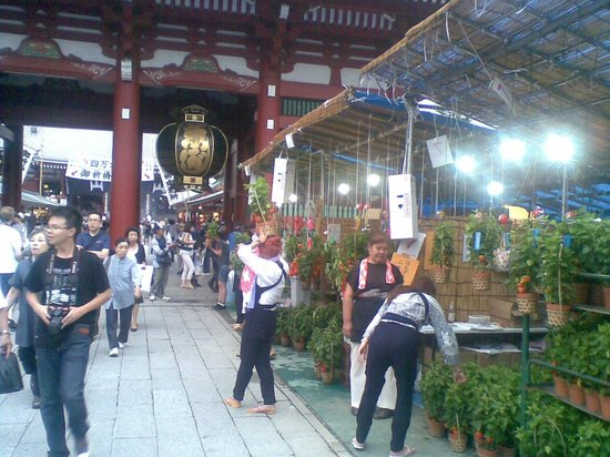 Asakusa Shrine: AsakusaTemple