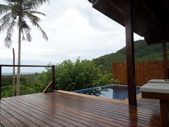 The Place Luxury Boutique Villas : Pool/view