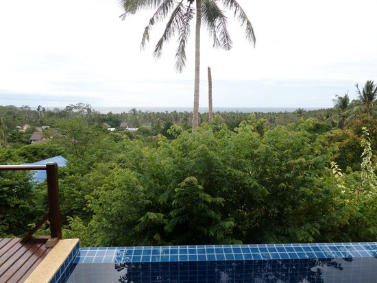 The Place Luxury Boutique Villas: View from the balcony