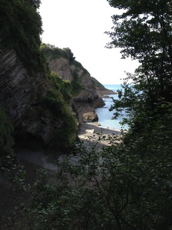 Watermouth Valley Camping Park: Down the steps to private beach