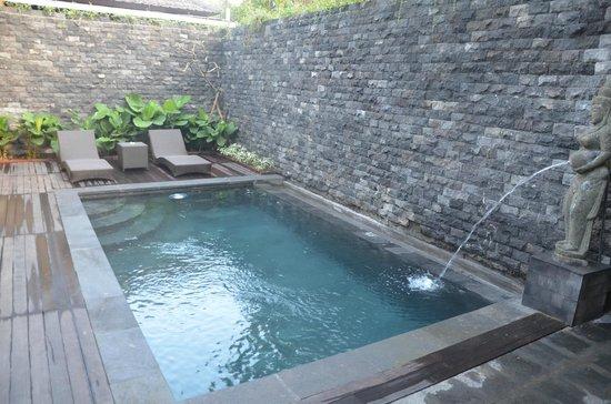 Ubud Raya Resort: Piscine privée