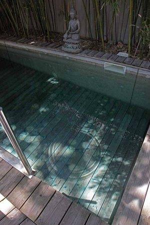 La Maison sur la Sorgue : piscine, extrait