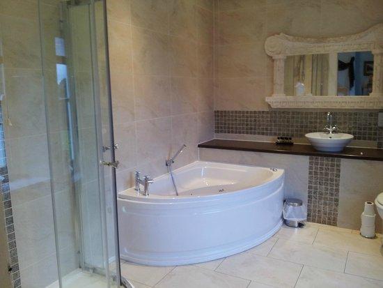 Court Colman Manor: Bathroom in Italian room