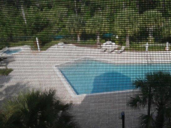 Palisades Resort : Pool area