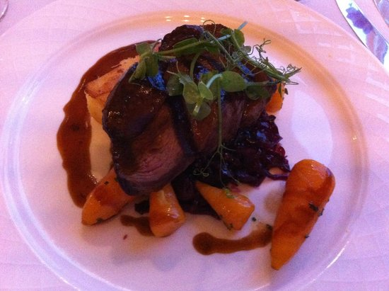 The Borrowdale Gates Hotel: My wife main, Venison