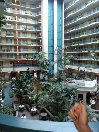 Embassy Suites by Hilton Miami - International Airport: Herrmosa vista al salir de la habitacion