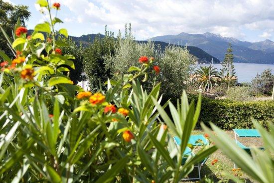Hotel Danila: Giardino