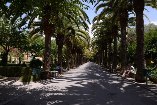 Ragusa Ibla : the shadowy Ragusa park with palm alignments