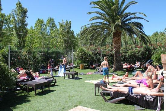 Piscine photo de camping sandaya riviera d azur saint - Camping les jardins de villepey saint aygulf ...
