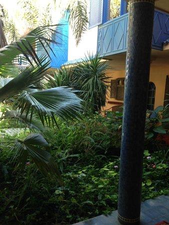 Villa Mandarine : Patio