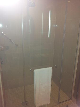 Traders Hotel, Qaryat Al Beri, Abu Dhabi : Stand up shower.