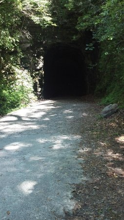 Stumphouse Mountain Tunnel: Mouth of tunnel as seen from outside.