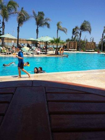 Avanti Mohammedia Hotel: nice place to sunbath and swim.