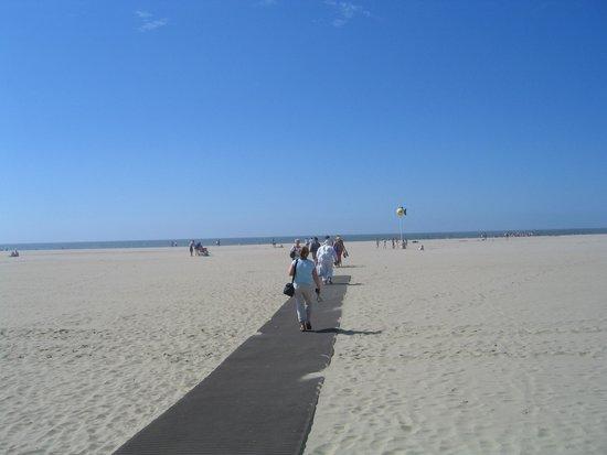 Plage de Deauville : Deauville Beach, кабинки