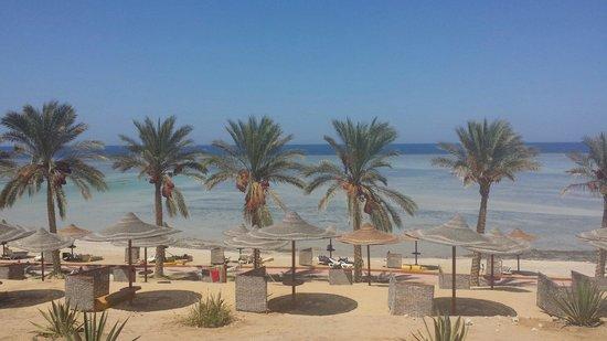 Eden Village Habiba Beach: Indimenticabile. ..