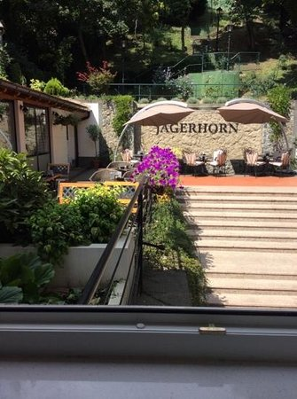Hotel Jagerhorn: the garden from our room