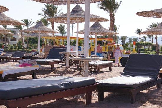 Regency Plaza Aqua Park & Spa Resort: Ciuchcia