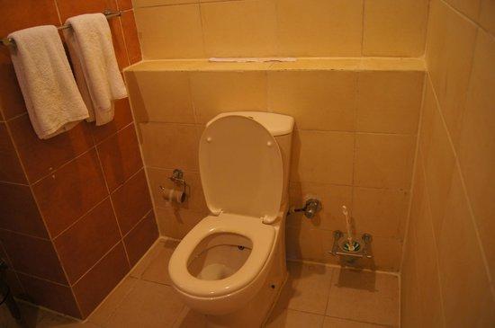 Regency Plaza Aqua Park & Spa Resort: WC