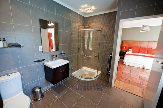 Ballinderry, The Robertson Guest House: Bathroom in pool suite