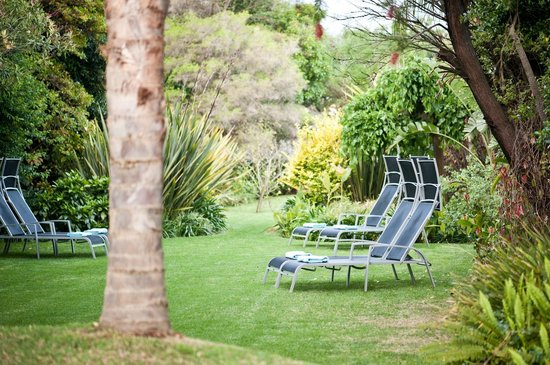 Ballinderry, The Robertson Guest House: Tropical garden