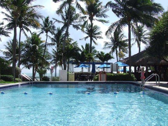 Amara Cay Resort: Piscine avec vue sur mer