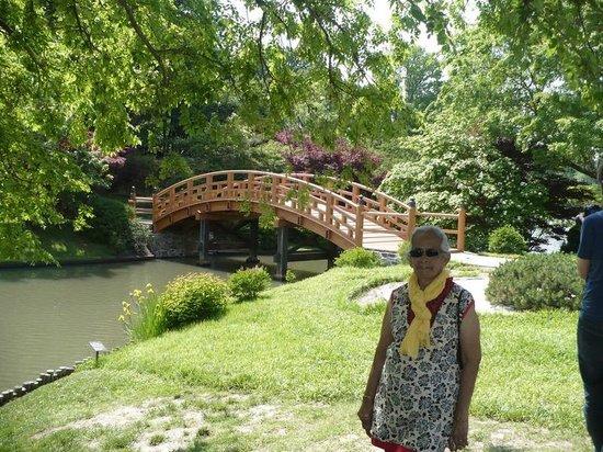 Missouri Botanical Garden: the tranquil japanese garden