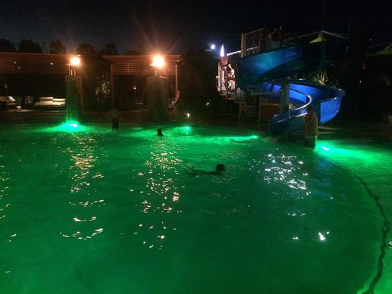 Gold Coast Holiday Park & Motel: Lovely night for a swim