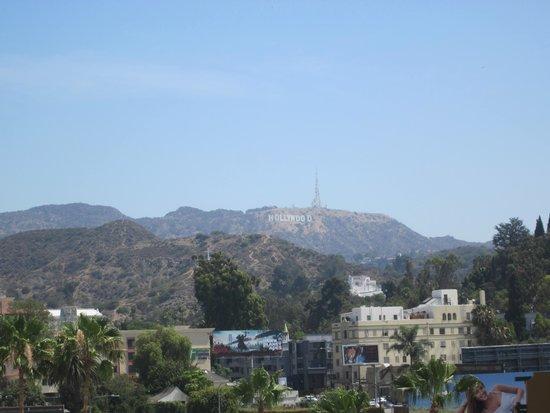 Loews Hollywood Hotel: Room View