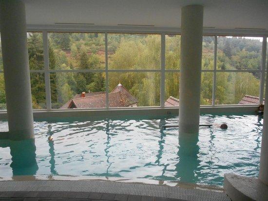 Hostellerie La Cheneaudiere - Relais & Chateaux: La piscine