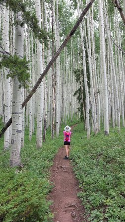 Four Seasons Resort and Residences Vail : Our hike through an Aspen clone