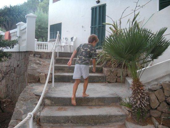 Hostal Los Pinos: hotel grounds