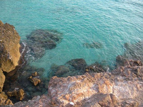 Hostal Los Pinos: sea