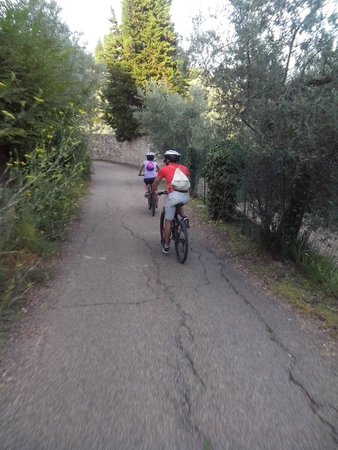 FiesoleBike Day Tours: Picturesque roads