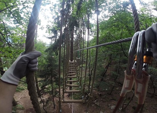 Pustolovski Park: Park