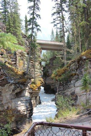 Athabasca Falls: old arm