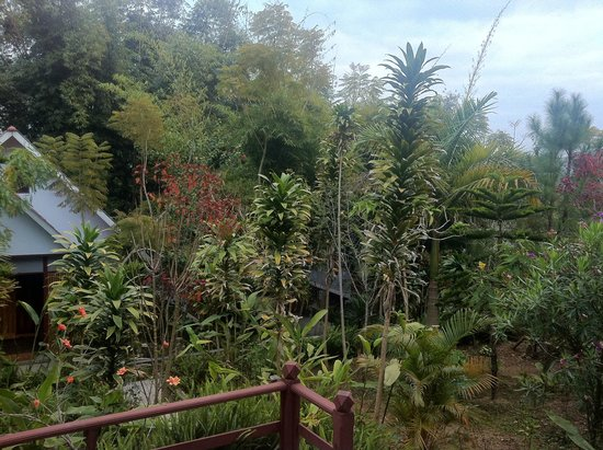 Nature Land Hotel Kalaw: Bungalows in Garden