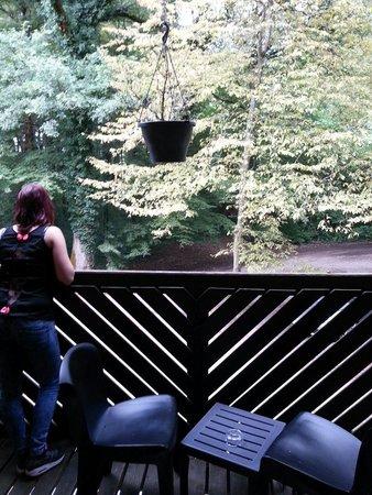 Hotel Diane: Balcon avec vue sur la forêt,  forêt qui entoure l'hôtel.