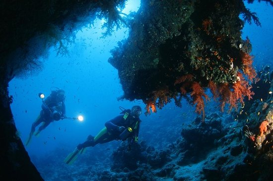 Wreck of the Dunraven - Picture of Sinai Divers Diving Center, Sharm El  Sheikh - Tripadvisor