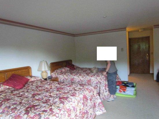Greenbrier Inn: chambre